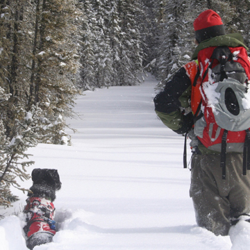 Conservation Canine's dog and handler walk in snow
