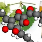A humulone molecule is superimposed on a hops vine and a glass of beer.