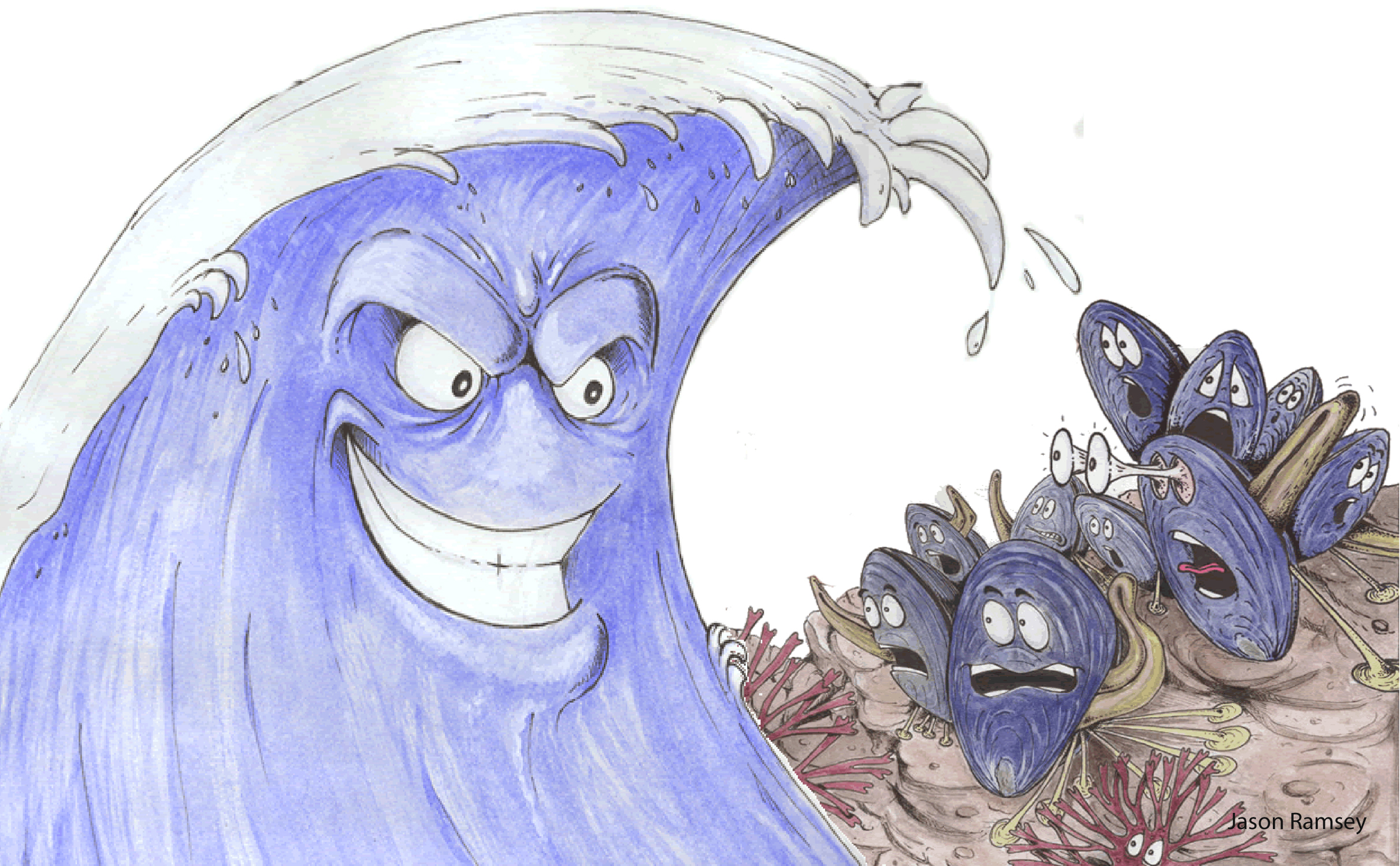 Drawing of wave with menancing face and startled mussels on shore