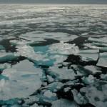 Chuchki Sea ice