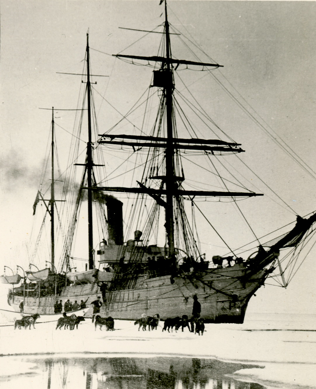 Photo of historic ship and dogs on ice