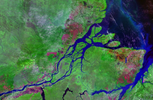 Satellite image of the Amazon River mouth