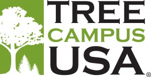 Tree Campus USA logo 2013