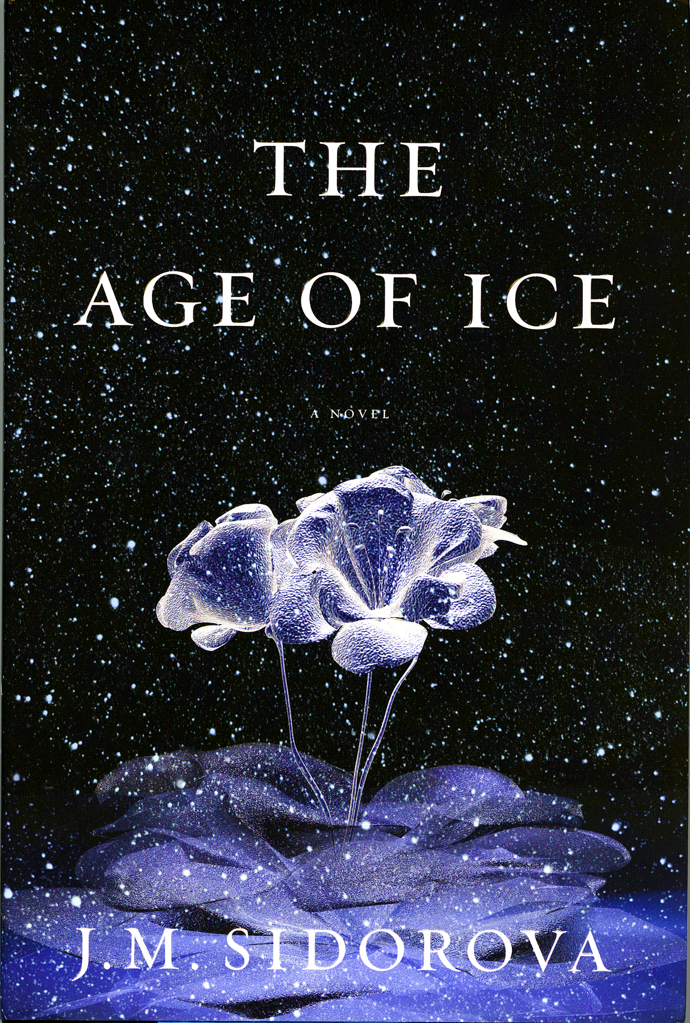 """""""The Age of Ice,"""" a new novel by UW researcher Julia Sidorova."""