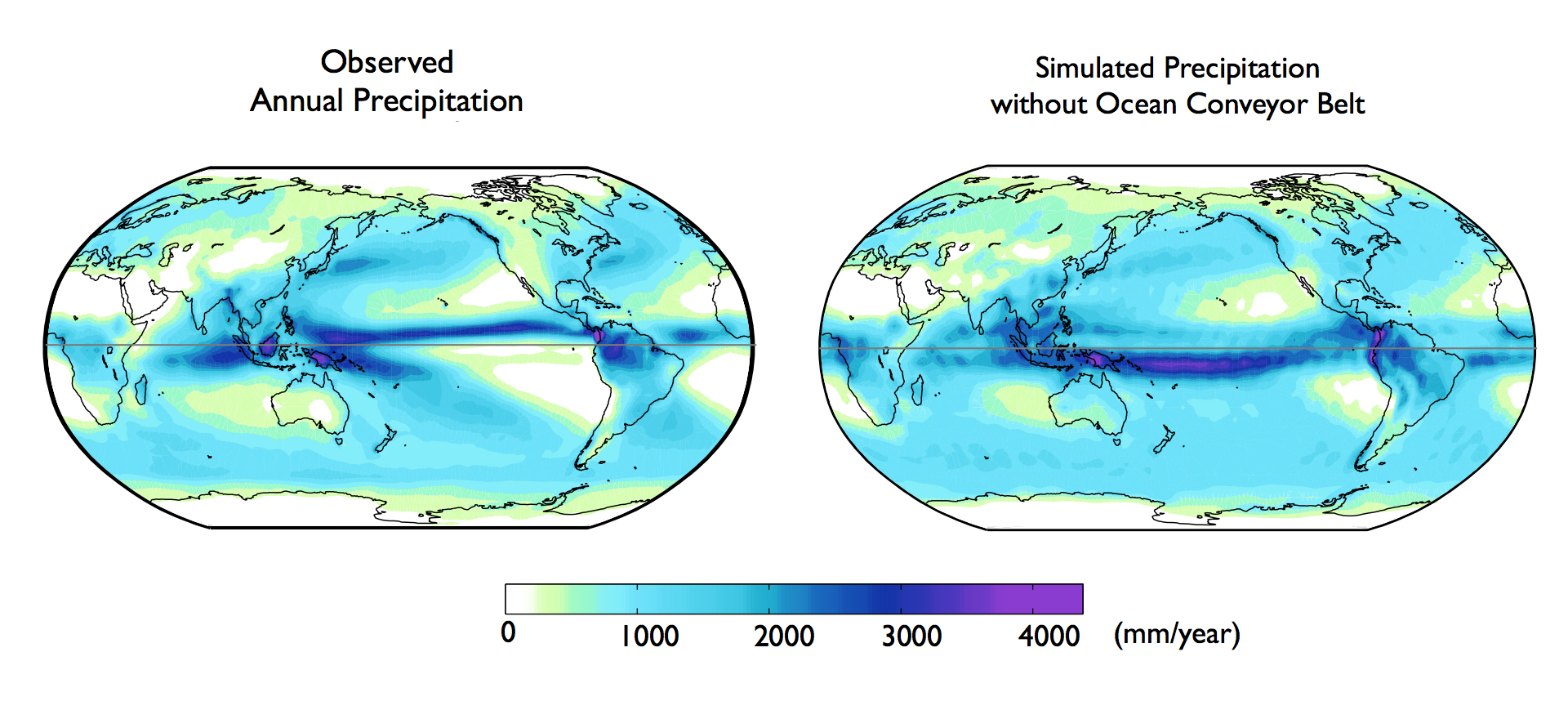 Precipitation World Map.Global Ocean Currents Explain Why Northern Hemisphere Is The Soggier