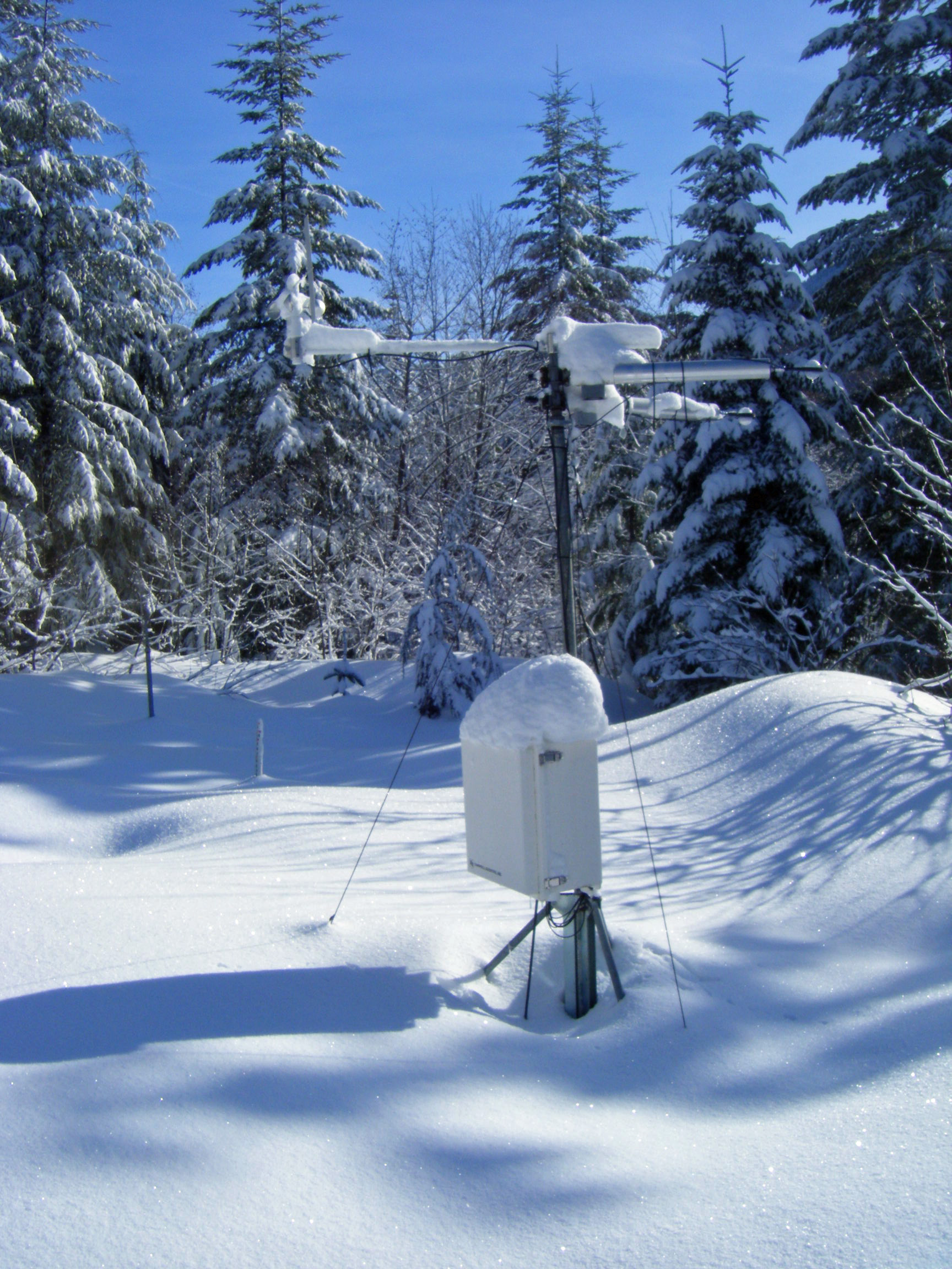 Snow covers the ground and instruments in an open gap site in the watershed.