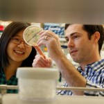 Neil King and graduate student Yu-Ru Lin observe bacterial colony growth at the Institute for Protein Design.