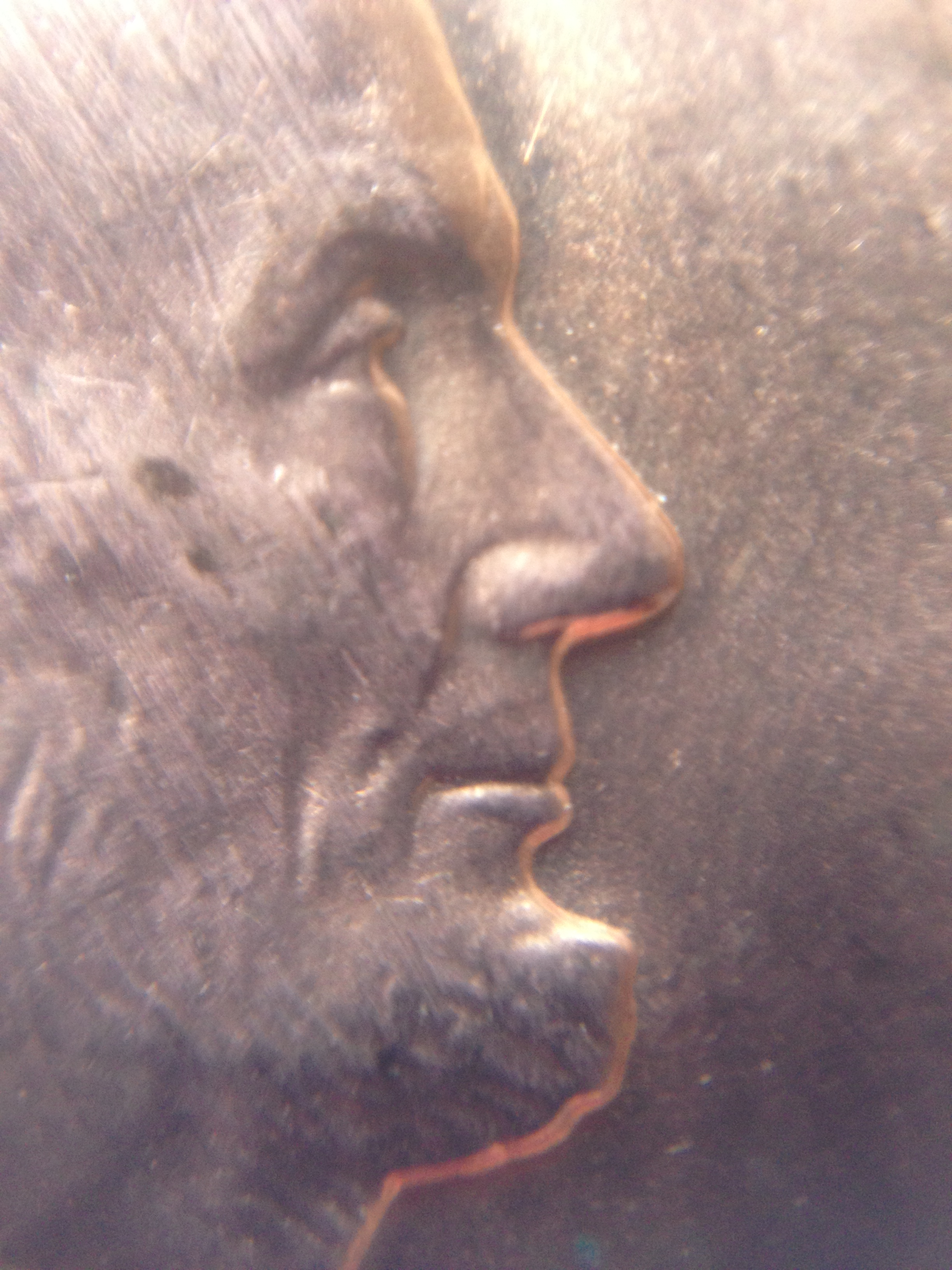 A penny magnified 15 times.