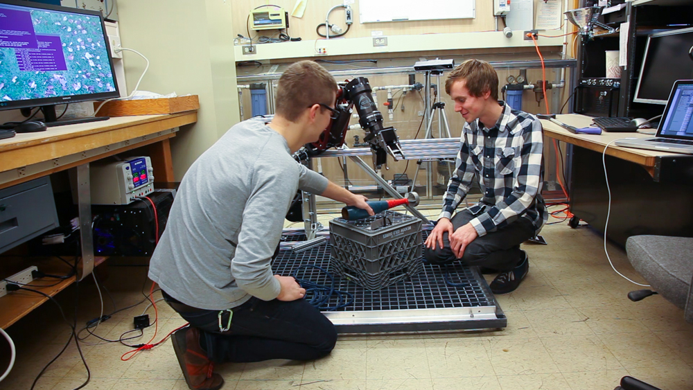 Undergraduates students work on instrumentation with the BluHaptics team.