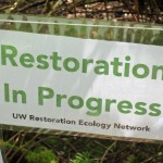 Sign on fence says Restoration in Progress