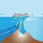 graphic of boat and hump