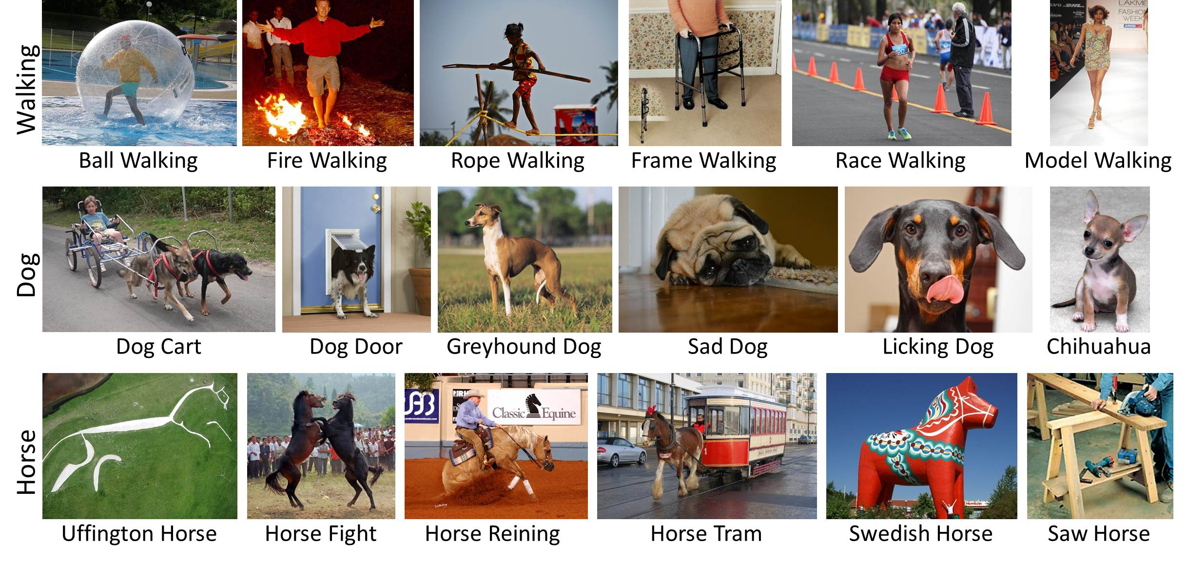 "Some of the many variations that the new program has learned for three different concepts: ""Horse,"" ""Dog"" and ""Walking."""