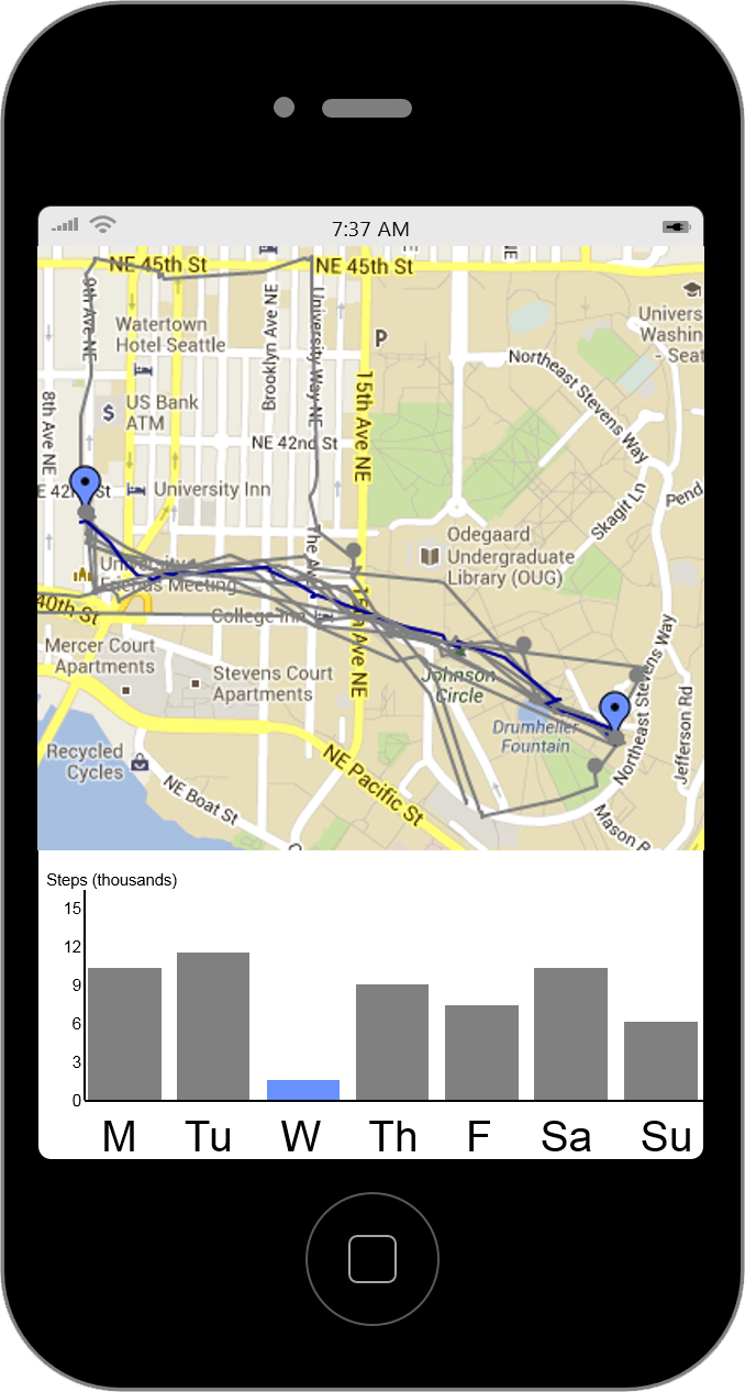 sample visualization on a smartphone