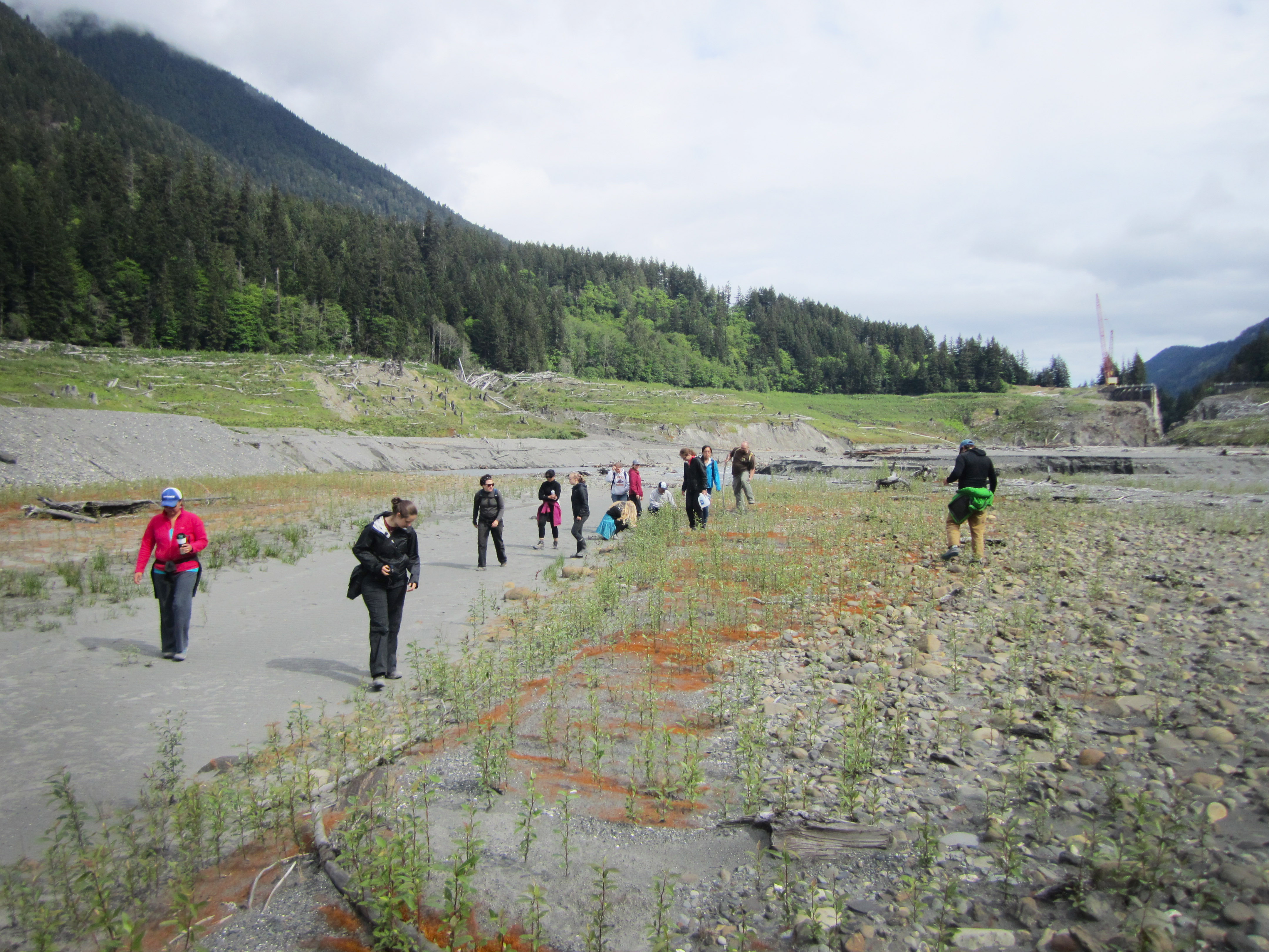 students walking in lake bed
