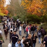 The University of Washington is offering a number of new degree programs with the start of fall quarter 2014.