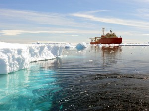 ship near icebergs