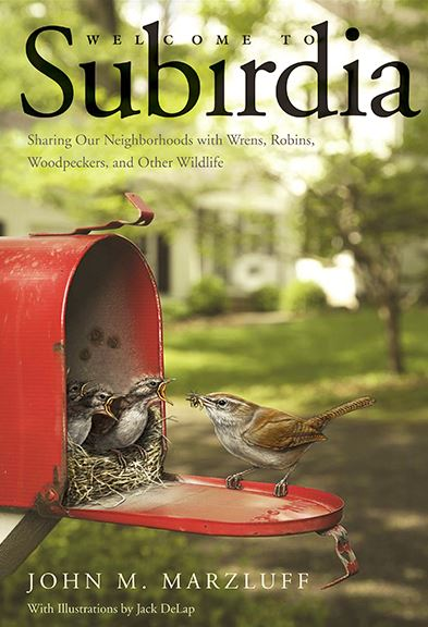 Book cover shows birds nesting in mailbox