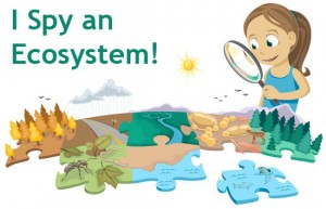 "A logo for a children's ""I Spy an Ecosystem"" study activity."