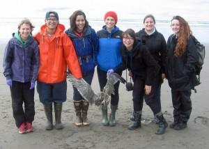 Seven students stand on beach holding bird carcass