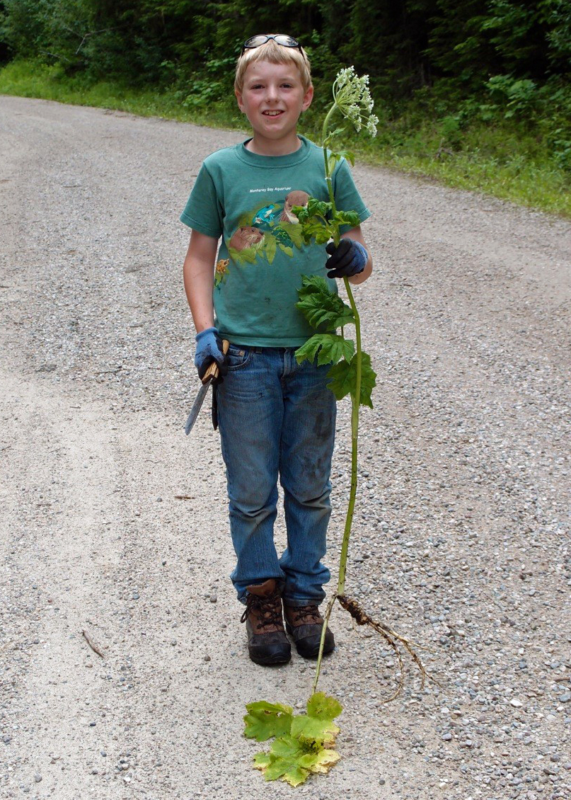 Boy holds plant with stem as tall as he his in road
