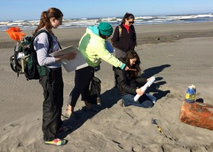 Students stand and sit on beach looking at plastic cooler lid and writing notes