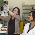Two women and willow cutting in lab