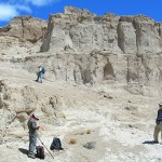 Patagonia-TILE
