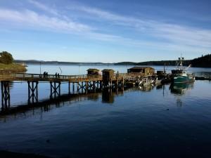 photo of dock in sunshine