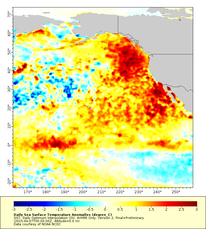Warm Blob In Pacific Ocean Linked To Weird Weather Across The Us - Pacific-ocean-on-us-map
