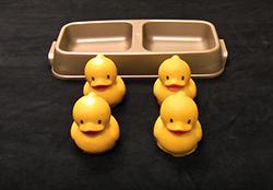 ducks 250