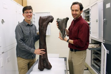 Christian Sidor, right, and Brandon Peecook show the size and placement of the fossil fragment compared to the cast of a Daspletosaurus femur.
