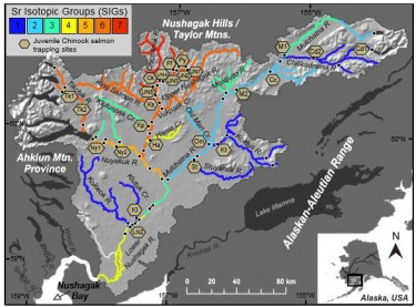 Map of the Nushagak River showing various strontium isotope groups.