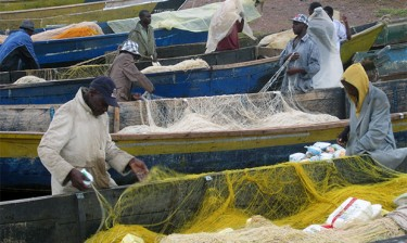 Nile perch fishermen check their nets on the shores of Lake Victoria in Uganda.