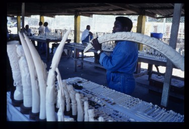 Local ivory market in central Africa.