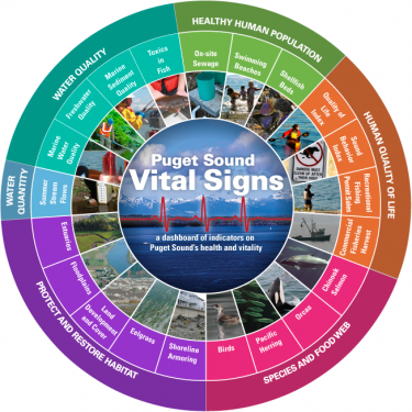The partnership's original vital signs wheel.