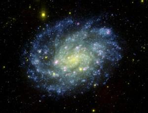 The galaxy NGC 300.