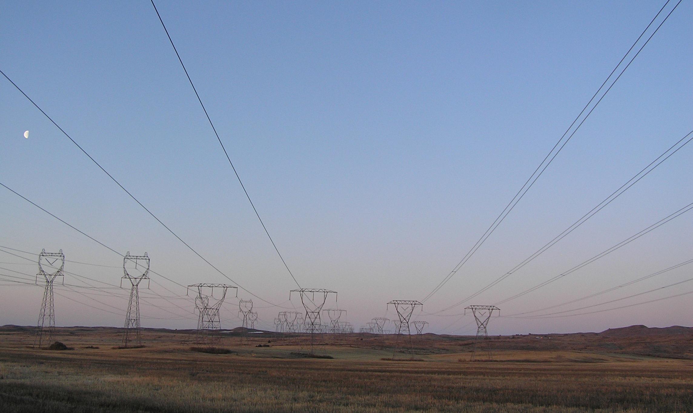 Impact of birds on power lines 29