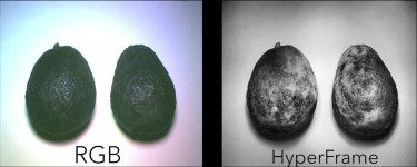 Avocado image comparison between HyperCam and regular camera.