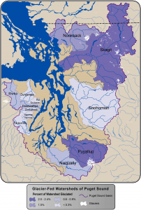 Glaciers are an important source of summer meltwater, especially in the Skagit and Puyallup basins. Purple shading show how much of each watershed's area is covered by glacier. These glaciers are projected to recede, releasing sediment and ultimately decreasing the cool late-summer flows that glaciers provide.