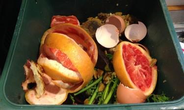 food scraps in compost bin