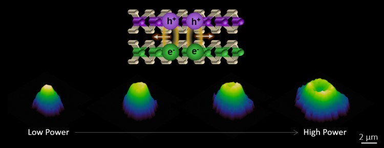 An illustration of the strong valley exciton interactions and transport in a 2-D semiconductor heterostructure.
