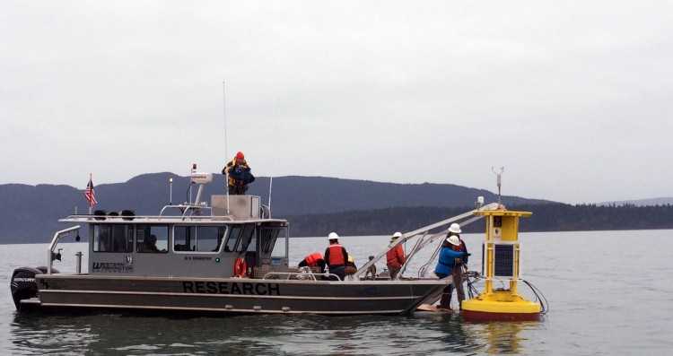 Preparing to launch the new buoy, named Se'lhaem, in Bellingham Bay.