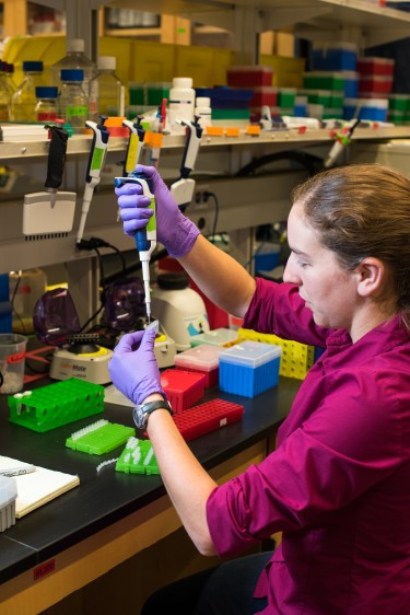 Lee Organick, a UW computer science and engineering research scientist, mixes DNA samples for storage. Each tube contains a digital file, which might be a picture of a cat or a Tchaikovsky symphony.