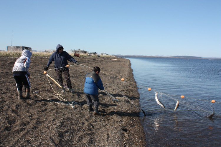 Sisualik, a traditional fish camp area for people from Noatak, Alaska in the Kotzebue Sound region.