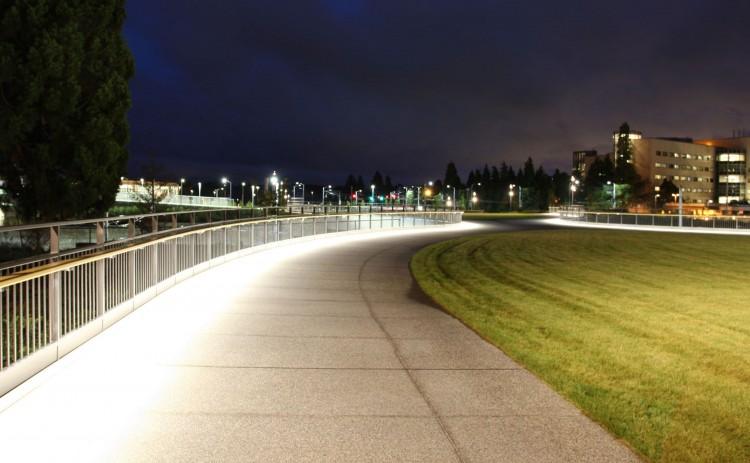 Lighting along Rainier Vista on the UW campus.
