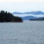 Marine microbes were collected from a low-oxygen fjord in Barkley Sound, off the coast of British Columbia.