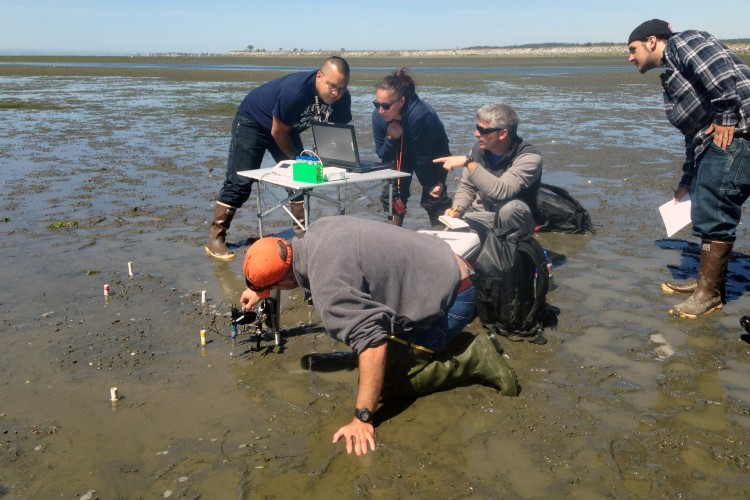 Marco Hatch works with native students to instrument mudflats of Puget Sound for environmental data collection.