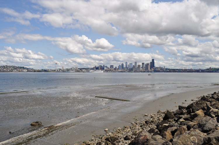 A view of downtown Seattle.