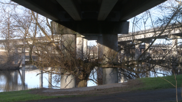 A tree wraps its branches around the concrete pillars of one of the ramps that weren't built due to the freeway revolt. Minda Martin of UW Bothell is directing a documentary about the protest.