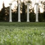Sylvan Grove columns
